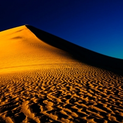 Mesquite Dunes at Sunset 1