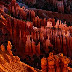 Glowing Hoodoos at Sunrise